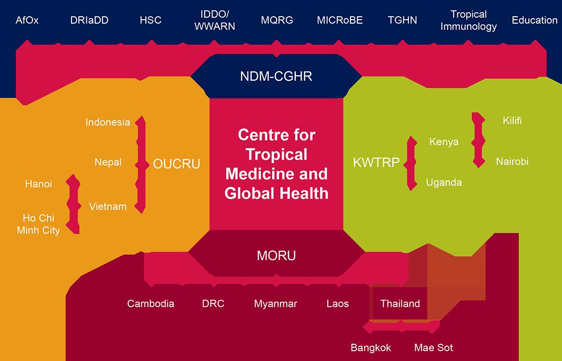 CTMGH diagram 2016